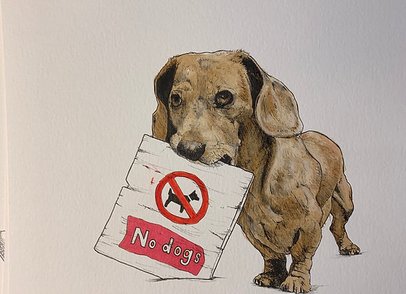 Dachshund No Dogs