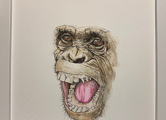 Chimp Face Original