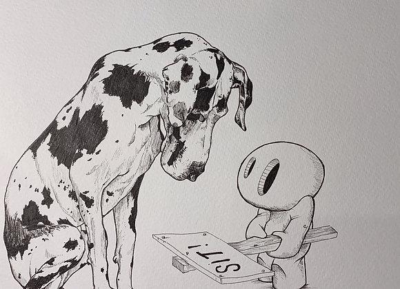 Dalmatian Sits