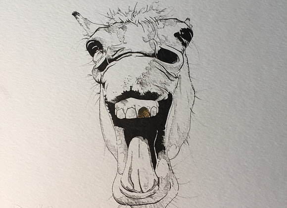 Gold Tooth Horse