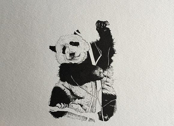 Panda Branches white