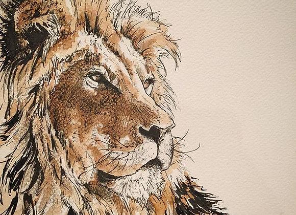 Coffee Lion Portrait