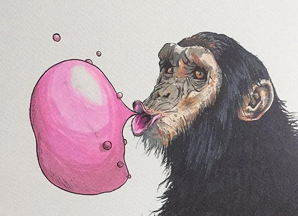 19.Chimps