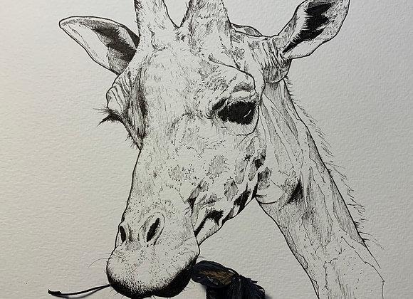 Giraffe Munch