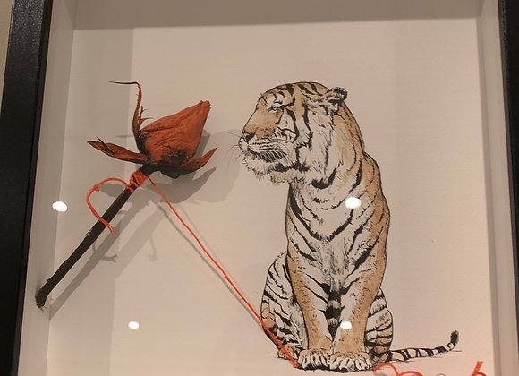 Tiger and rose