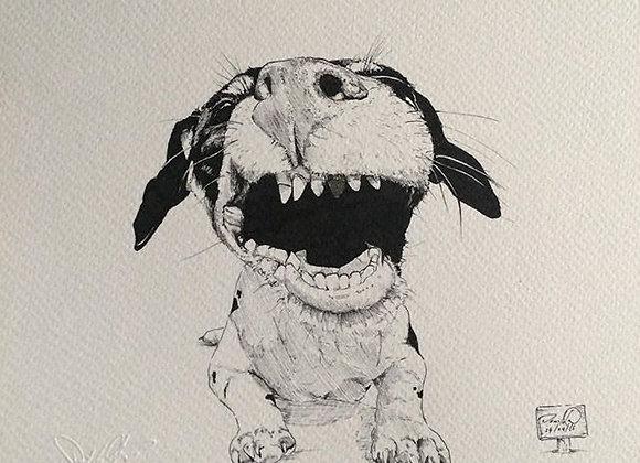 Dog Goldleaf smile