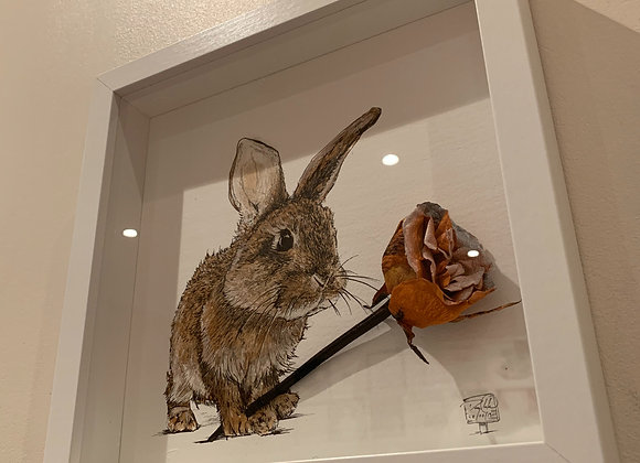 Rabbit and rose