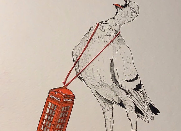 Pigeon Phone box