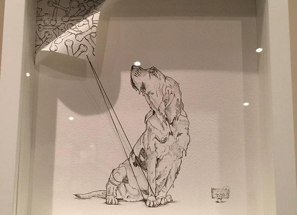 2.Dog getting a bone