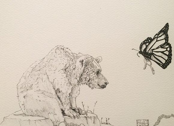 Bear vs Butterfly key