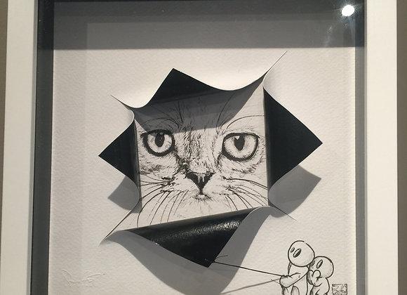 5.cat reveal