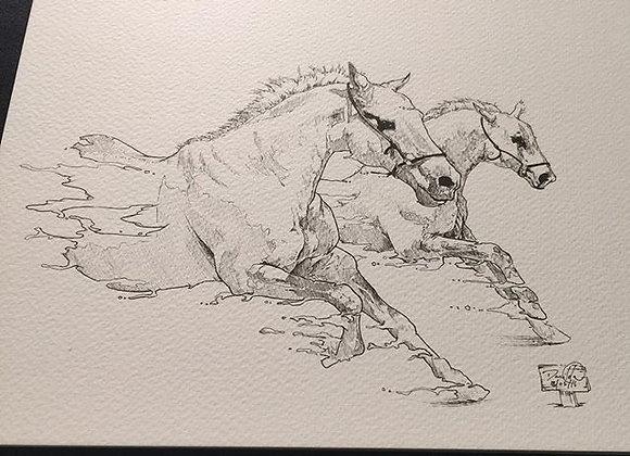Horses two run