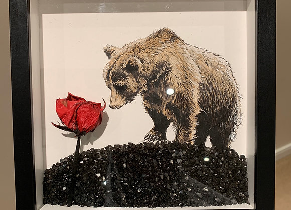 Bear and Red Rose