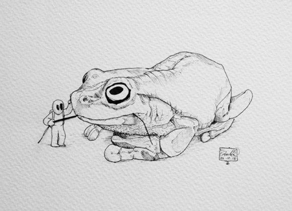 Goody frog- String series
