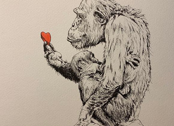 Chimp and hug