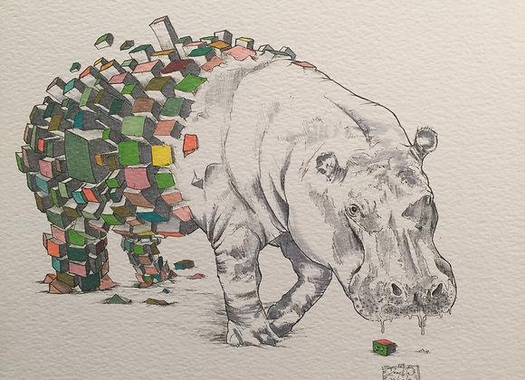 Hippo Squared