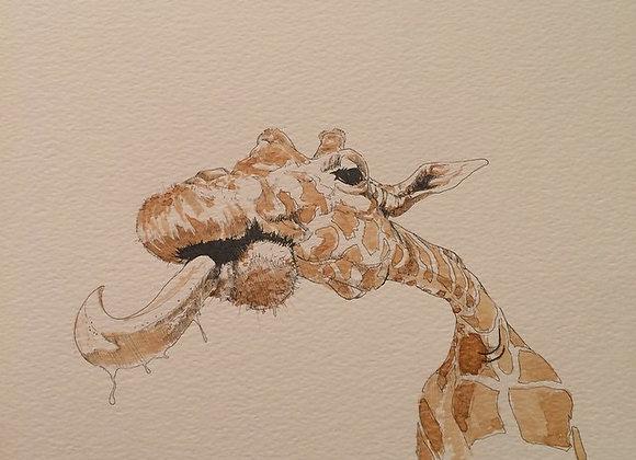 Coffe Giraffe