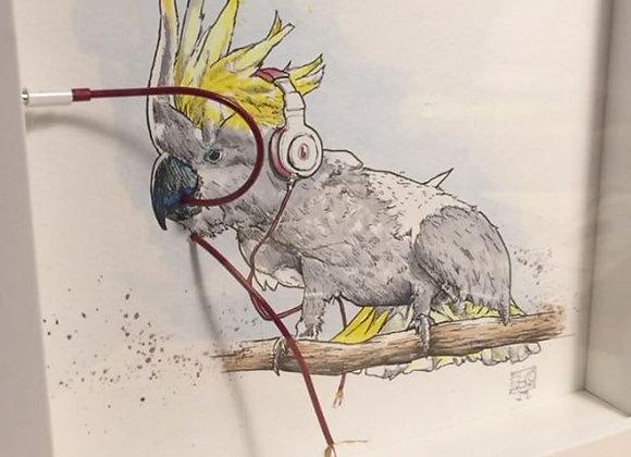 Cockatoo music beats