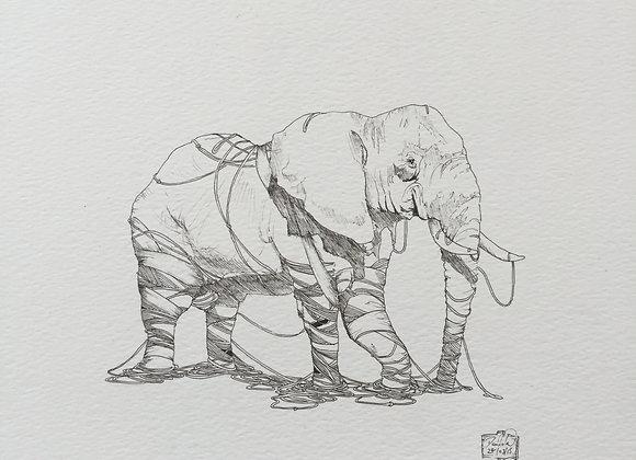Deconstruct Elephant