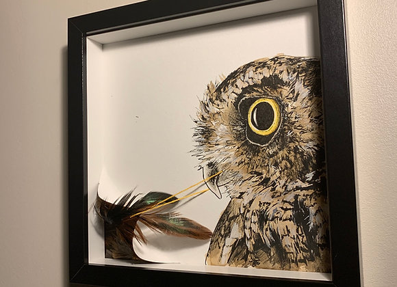 Owl reveal