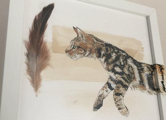 12.Cat jump