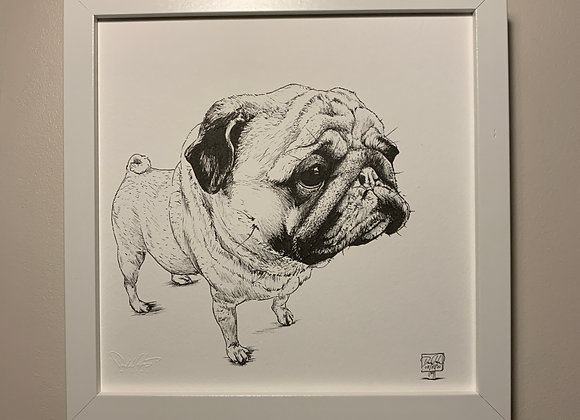 The Best Pug face