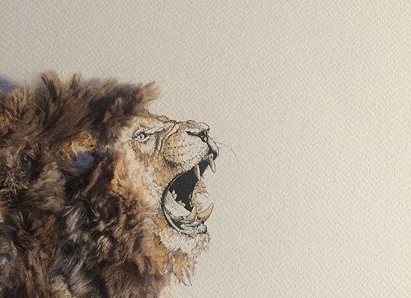 Lion face roar Feather