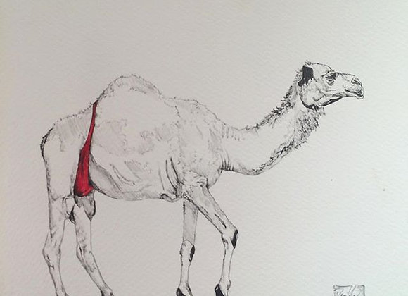 Red Camel