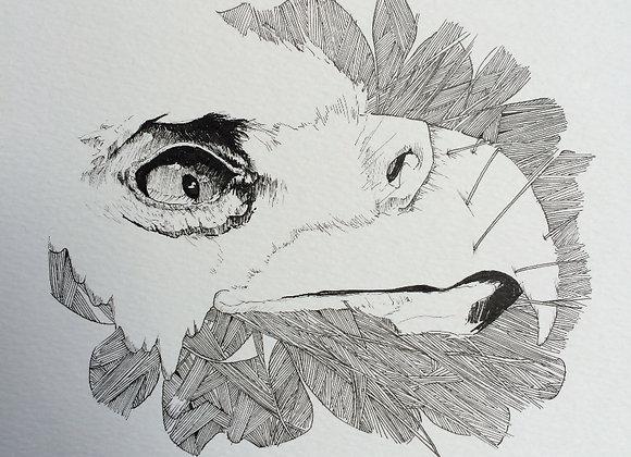 Eagle Texture