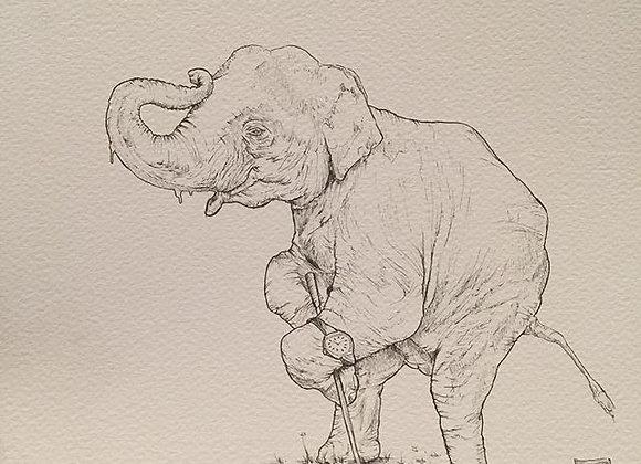 Elephant golf