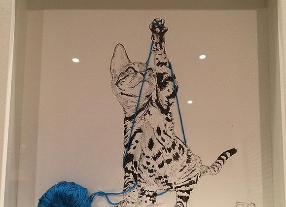 Cat and blue string