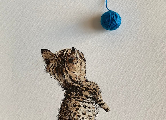 Kitten and coffee string