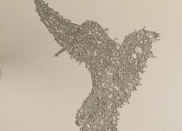 Bird Map