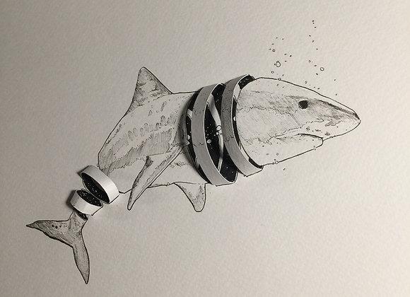Sharky Ribbon
