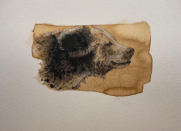 76.Coffee Bear frame