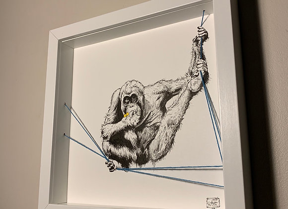 Orangutang hang
