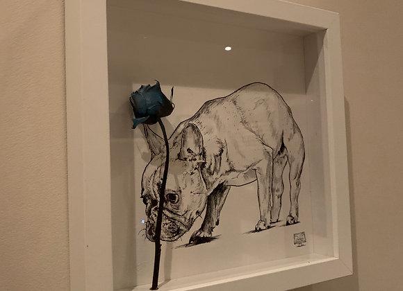 Frenchie blue rose