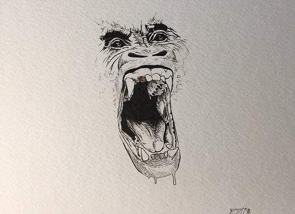 Gold Tooth Gorilla