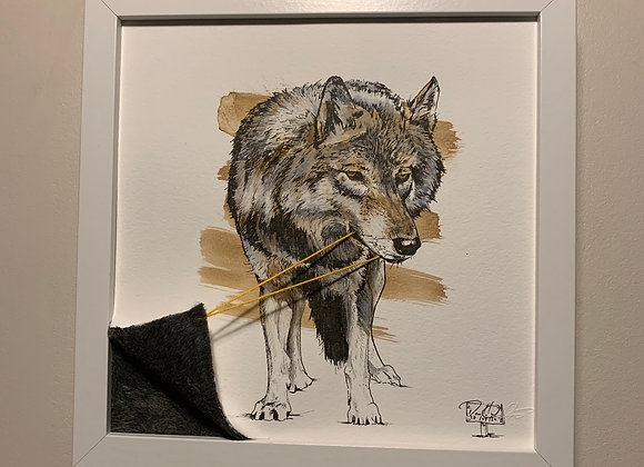 30.Wolf Reveal