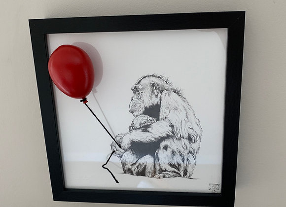 Chimp and my balloon
