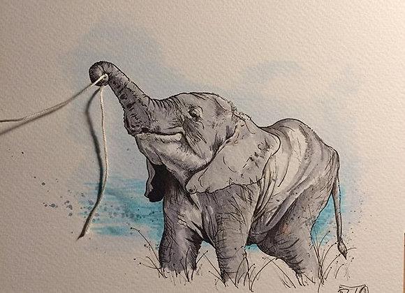 7/8.Double Colour elephant