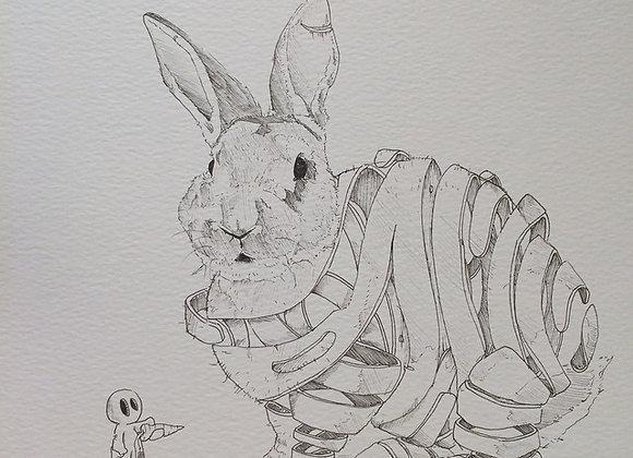 Rabbit Deconstruct