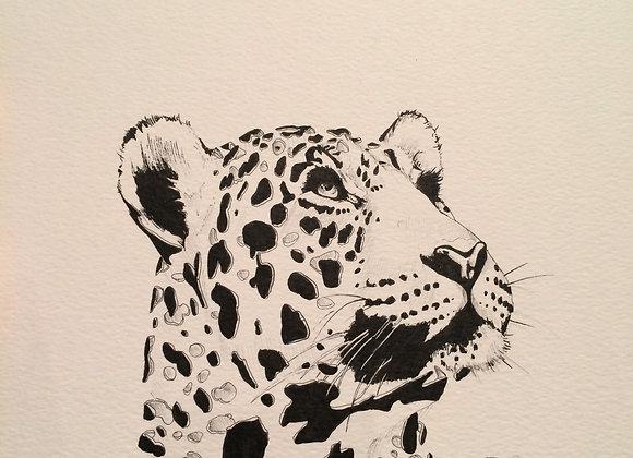 Leopard Spot Deconstruct