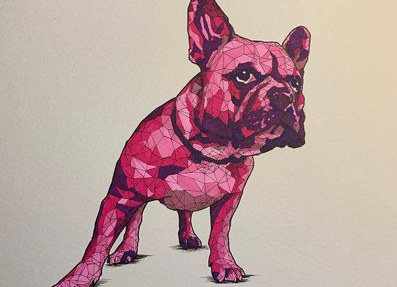 Geometric pink stare