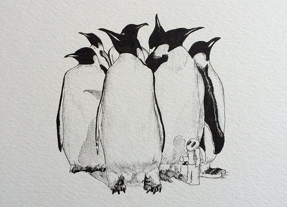 Bird Gang group