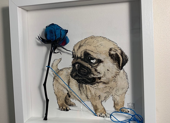 Pug pup and Blue rose