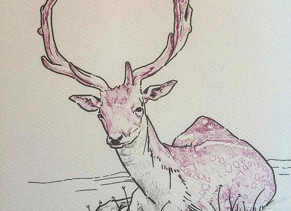 Pink deer