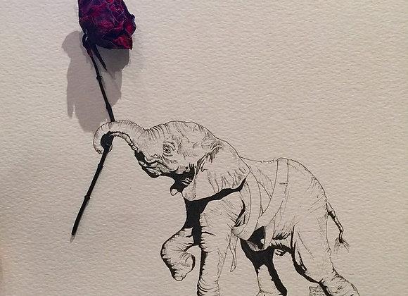 Elephant red rose