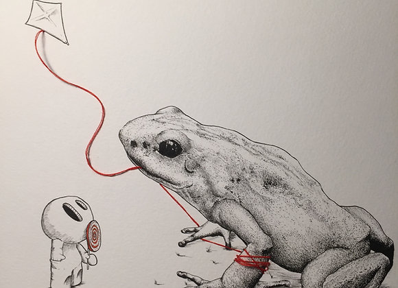 Frog and kite