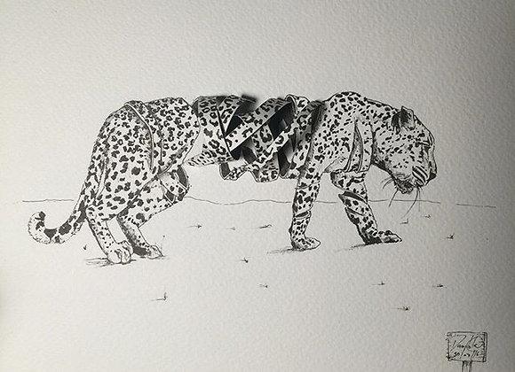 Leopard deconstructed 3D